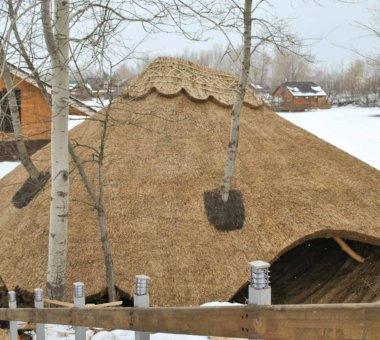 Ціна камишових дахів