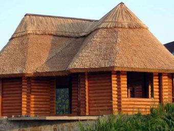 Солом'яний дах: у чому його переваги